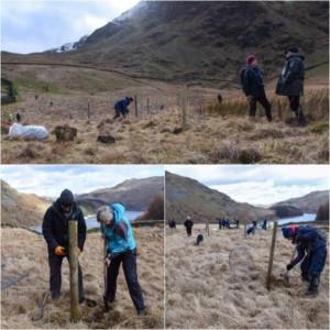 Alpine Garden Society conservation RSPB Haweswater