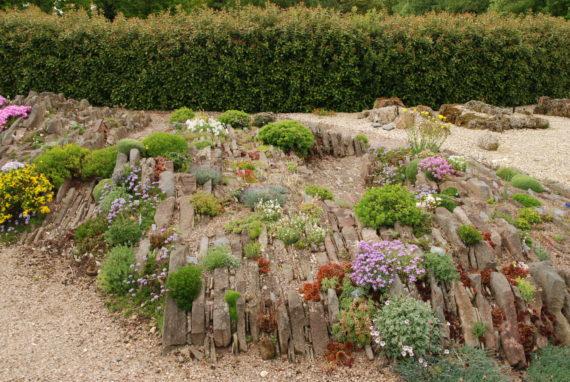 Alpine garden society pershore garden