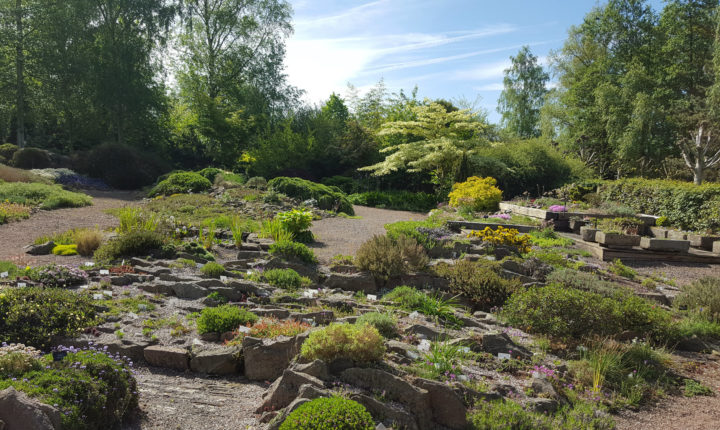 Alpne Garden Society pershore garden