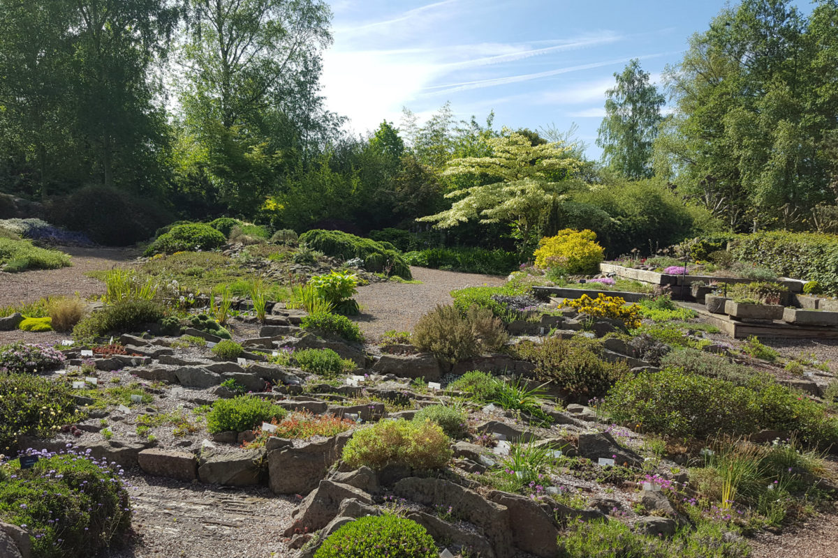 Alpine Garden Society Pershore garden May 2018