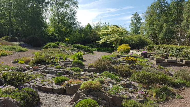 Alpine Garden Society Pershore garden May 2018