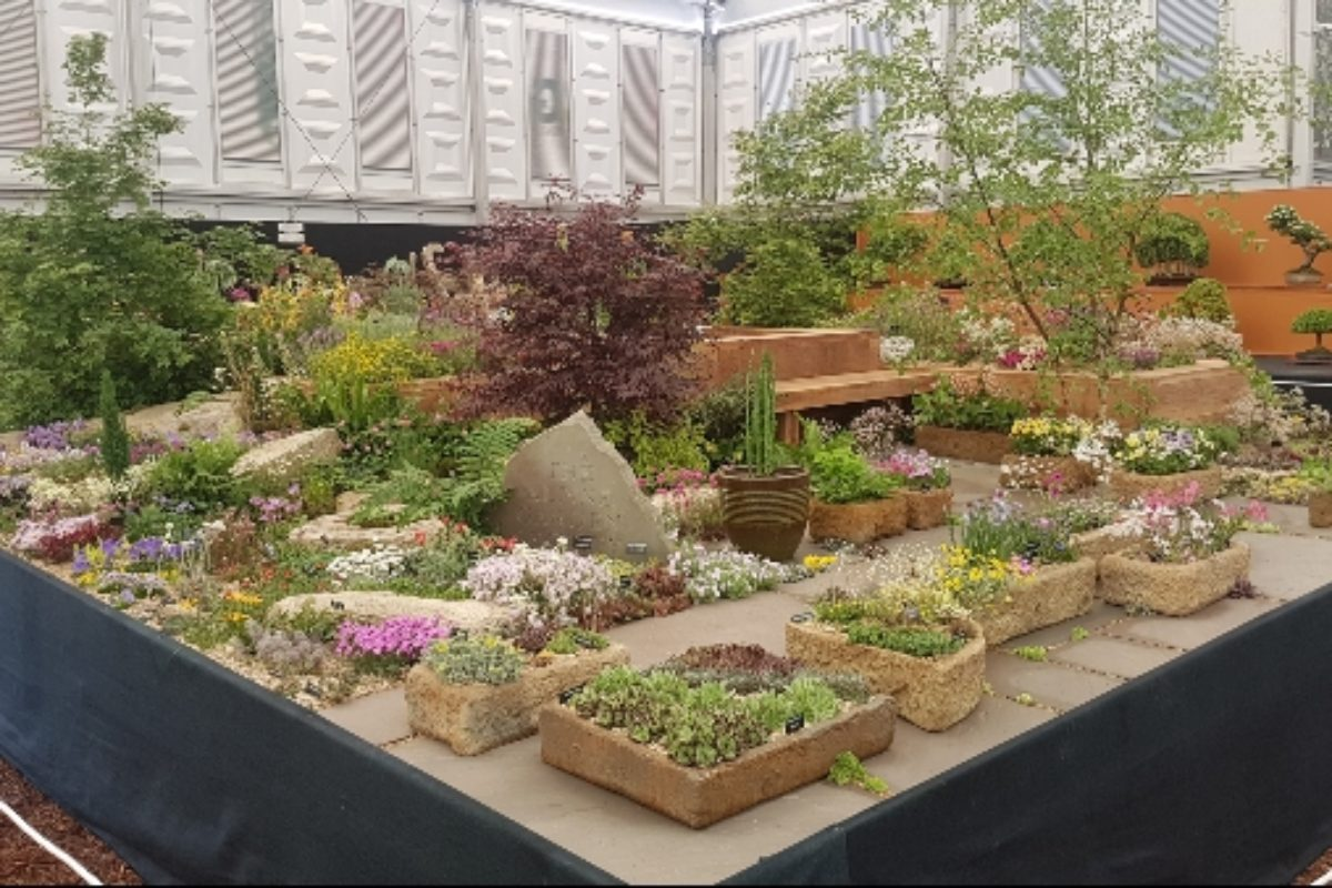 AGS Chelsea Flower Show 2018