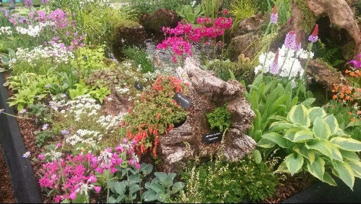 AGS Chelsea Flower Show 2016