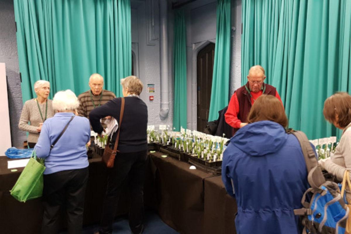 Plant sales Alpine Garden Society Snowdrop Day 2017