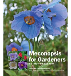 Meconopsis for Gardeners