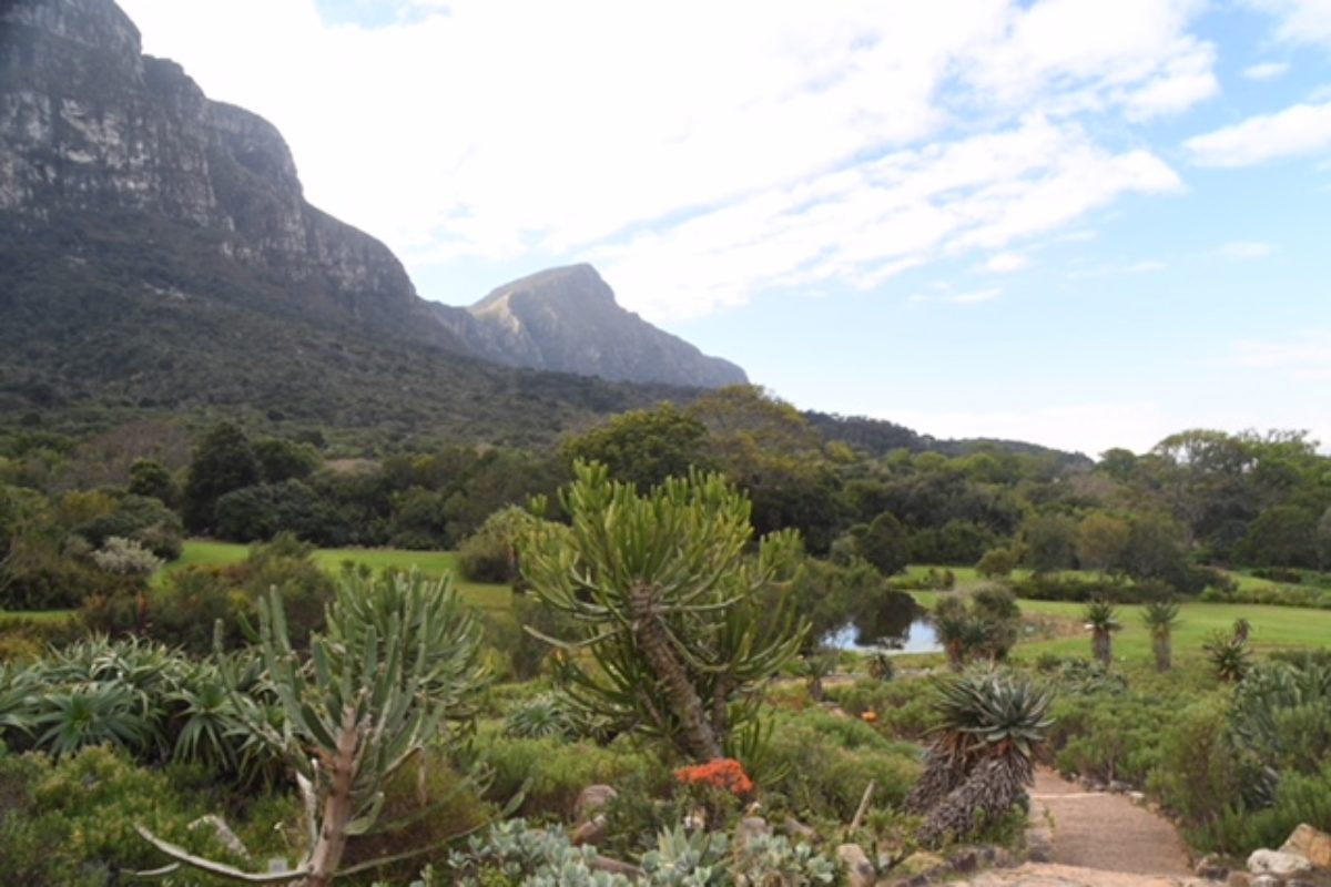 Kirstenbosch Botanical Garden (South Africa)