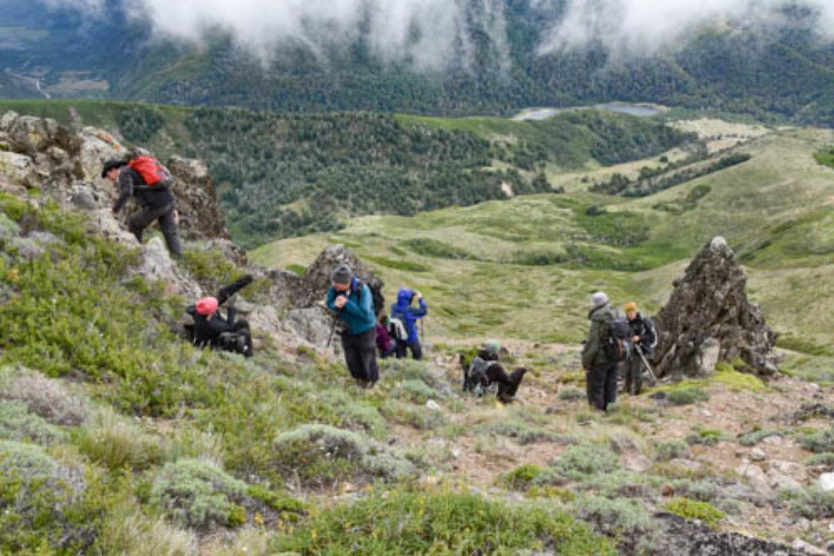 Cerro Colo Huincul (Patagonia)