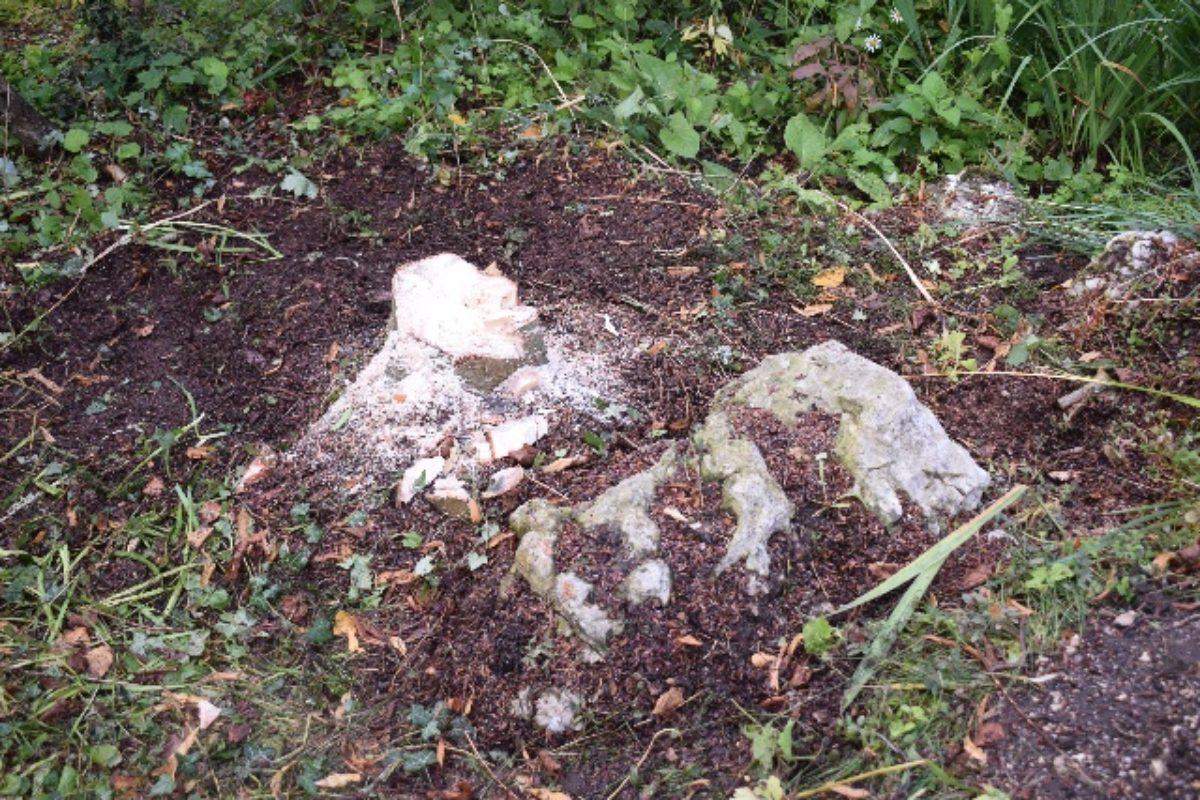 tree stump northumberland garden