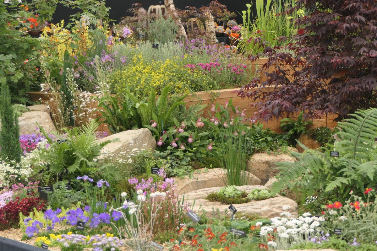 ags chelsea garden 2018
