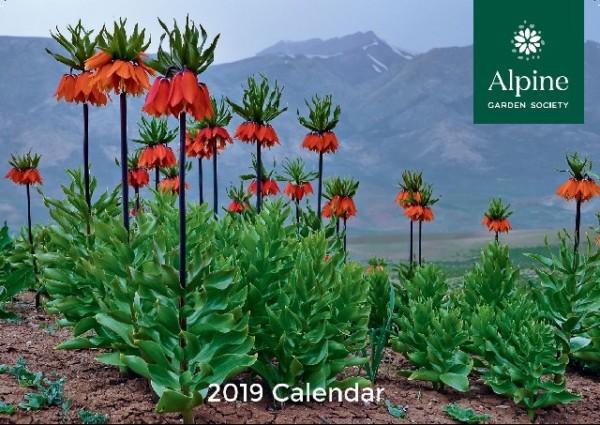 AGS Wall calendar 2019