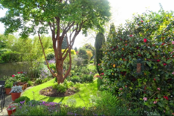 north wales garden may 2018