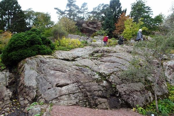 sizedNatural glaciated rock, rock garden, Gothenburg53099