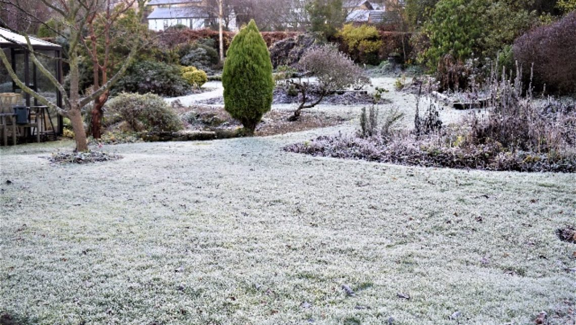 frosted lawn john richards