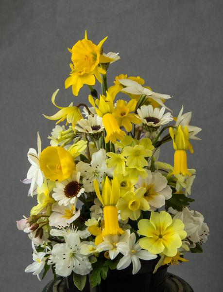 Flower arrangement (Exhibitor: Maris & Sam Lloyd)