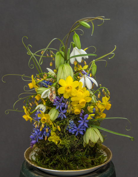 Flower arrangement (Exhibitor: Ben & Paddy Parmee)
