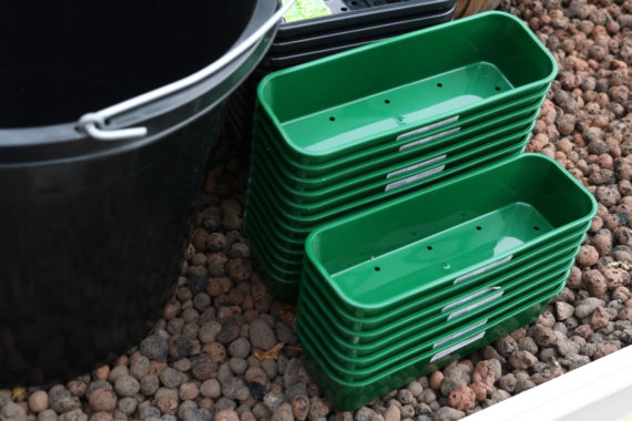 Trays for seed sowing