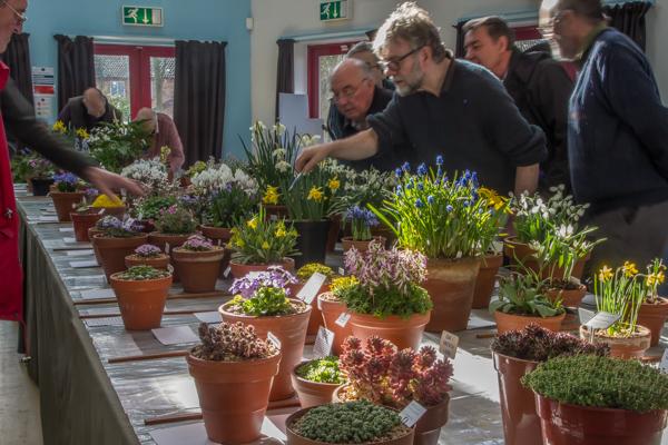 show view loughborough spring 2019