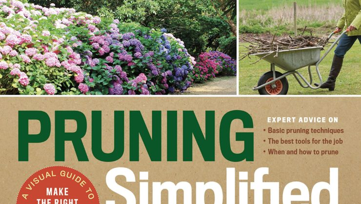 Pruning Simplified