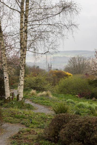 Cottage Garden at The Garden House, Devon