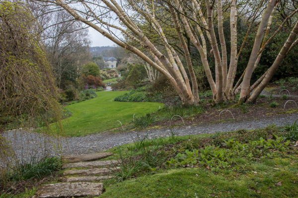 The Long Walk, The Garden House, Devon
