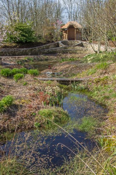 Pools at Wildside Garden Nursery