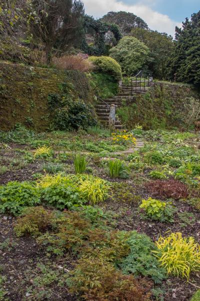 Tennis Court Lawn, The Garden House, Devon