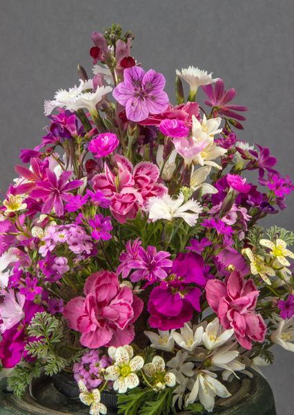 Flower Arrangement (Exhibitor: Dot Sample)
