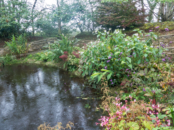 The pools at the botton of the garden, wildside nursery