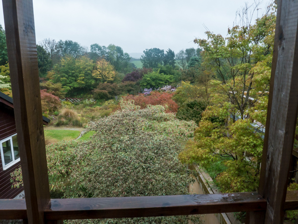 View over the garden from the house at Wildside Nursery