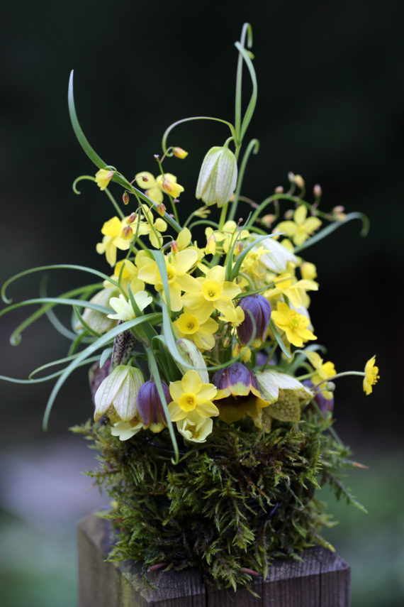 Flower arrangement with daffodils and fritillaria