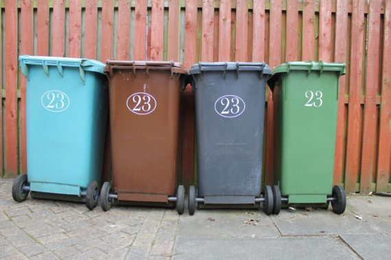 Coloured wheelie bins