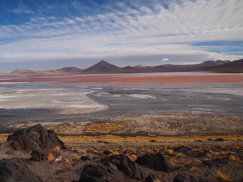 Laguna Colorada Bolivia by James Miller