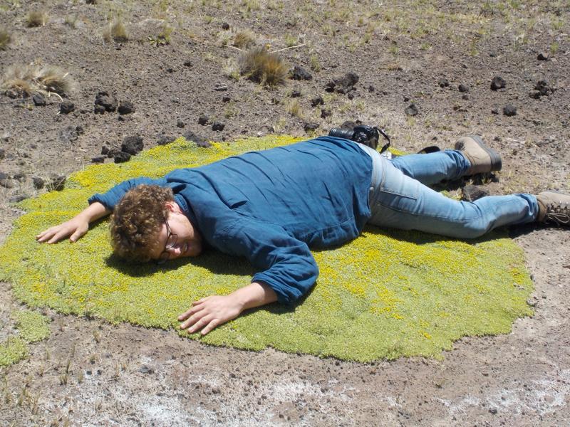 Azorella monantha and Tom Pickering in Patagonia by Alex O'Sullivan