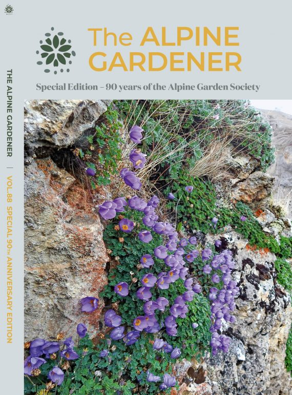 Bumper edition of the Alpine Gardener featuring the 90th anniversary edition cover