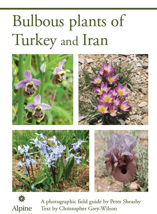 Bulbous Plants of Turkey & Iran