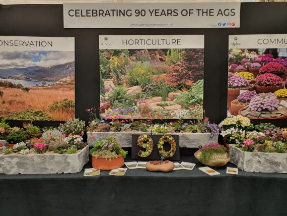 ags wins gold medal at Tatton flower show
