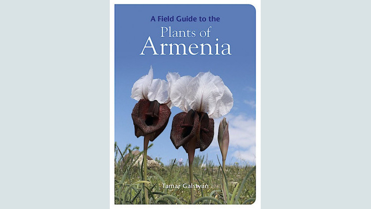 Field Guide Plants Armenia